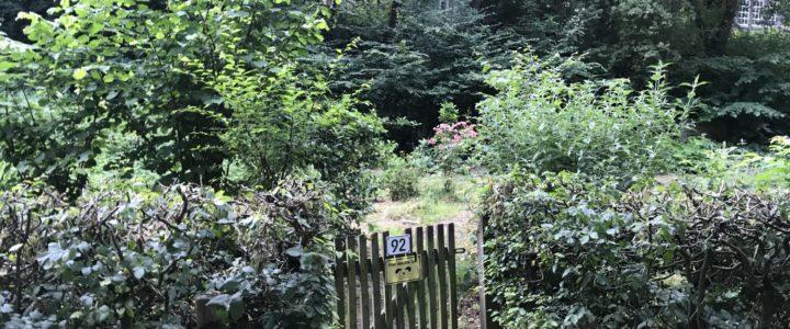 Ein Garten für Alle